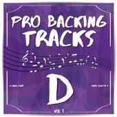 Pro Backing Tracks D, Vol.7 by Pop Music Workshop