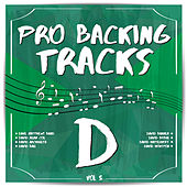 Pro Backing Tracks D, Vol.5 by Pop Music Workshop