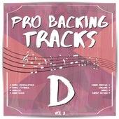 Pro Backing Tracks D, Vol.2 by Pop Music Workshop