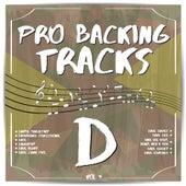 Pro Backing Tracks D, Vol.4 by Pop Music Workshop