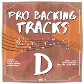 Pro Backing Tracks D, Vol.3 by Pop Music Workshop
