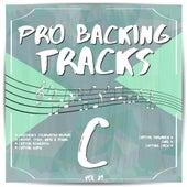 Pro Backing Tracks C, Vol. 29 by Pop Music Workshop