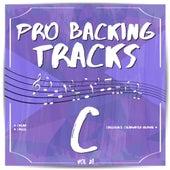 Pro Backing Tracks C, Vol. 28 by Pop Music Workshop