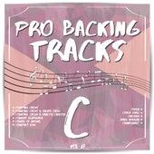 Pro Backing Tracks C, Vol. 27 by Pop Music Workshop
