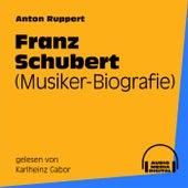 Franz Schubert (Musiker-Biografie) by Franz Schubert