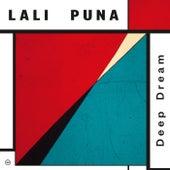 Deep Dream de Lali Puna