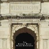 Magic Kingdom by The Gordon Meier Blues Experience