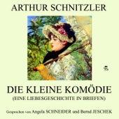 Die kleine Komödie (Eine Liebesgeschichte in Briefen) von Angela Schneider Arthur Schnitzler