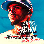 Welcome To My Life by Chris Brown