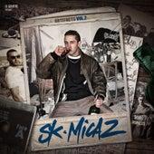 Artefacts Vol.2 de SK Micaz
