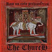 Bajo un Cielo Prehistórico (Homenaje a The Church) de Various Artists