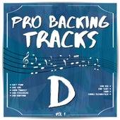 Pro Backing Tracks D, Vol.1 by Pop Music Workshop