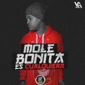Bonita Es Cualquiera by Mole