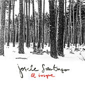 El Bosque (Radio Edit) de Josele Santiago