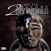 Welcome 2 My World von Lilted