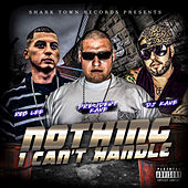 Nothing I Can't Handle by The Prezident Kane