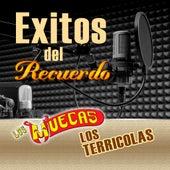 Exitos Del Recuerdo by Various Artists