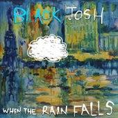 When The Rain Falls by Black Josh
