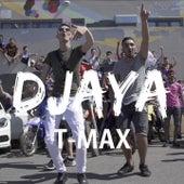 T-Max de Djaya