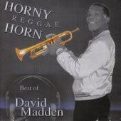 Horny Reggae Horn de David Madden
