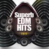 Superb EDM Hits 2015 de Various Artists