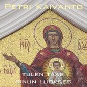 Tulen taas sinun luokses by Petri Kaivanto