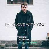 I'm In Love With You de Endre Nordvik