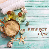 Perfect Spa – Healing Nature, Soft Spa Music, Nature Sounds for Wellness, Massage, Relaxation, Stress Relief, Inner Harmony, Zen von S.P.A