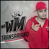 Transariano de MC Wm