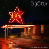 The Best Of Big Star de Big Star