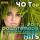 40 Top Downtempo & Ambient Chillout Hits 2017 (Best Of Psybient, Lounge, World, TripHop, Dub & Bass) von Various