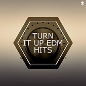 Turn It Up EDM Hits von Various Artists