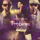Problema by Cheka