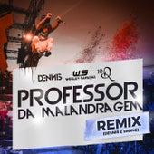 Professor Da Malandragem (Dennis DJ e DANNE Remix) de Dennis DJ