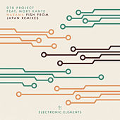 Narama (Fish From Japan Remixes) by DT8 Project