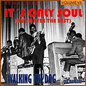 It's Only Soul (But Maybe the Best), Vol. VII - Walking the Dog... and More Hits (Remastered) by Various Artists