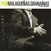 FlamencoPassion. Por Malagueñas, Granaínas y Media Granaína by Various Artists