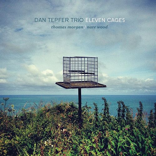 Eleven Cages by Dan Tepfer