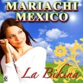 La Bikina by Mariachi Mexico