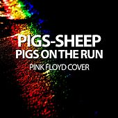 Pigs - Sheep - Pigs on the Run - Pink Floyd Cover by Will Taylor