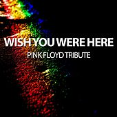 Wish You Were Here - Pink Floyd Tribute by Will Taylor