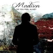Do You Feel Alive? de Madison