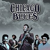 Introducing Chicago Blues de Various Artists