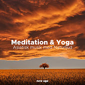 Meditation & Yoga - Asiatisk musik med Naturljud de Various Artists
