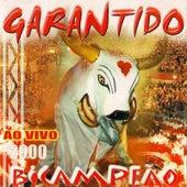 Garantido 2000 (Ao Vivo) de Boi Bumbá Garantido