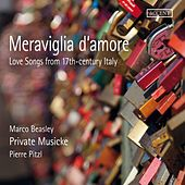Meraviglia d'amore: Love Songs from 17th Century Italy by Various Artists
