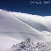 Enduit by Ron Mulder