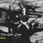 Hive by Glee Club