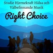 Right Choice - Studie Hjernekraft Hälsa Och Välbefinnande Musik med Instrumental New Age Natur Ljud by Asian Music Academy