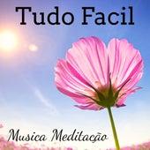 Tudo Facil - Musica Meditação para Cura Espiritual Chakras Reiki Meditação Profunda com Sons New Age Naturais de Various Artists